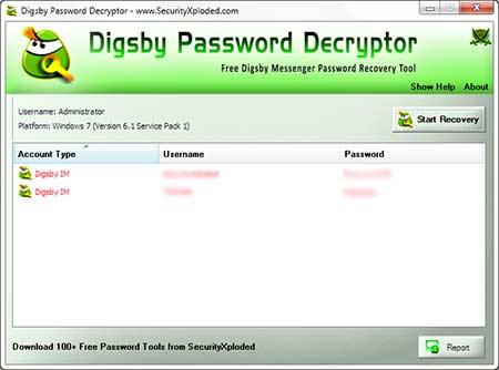 DigsbyPasswordDecryptor showing recovered passwords