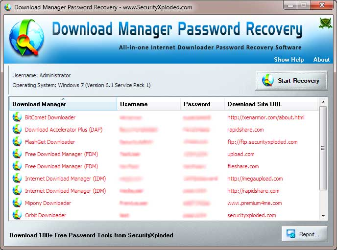 Download Manager Password Recovery Screen shot