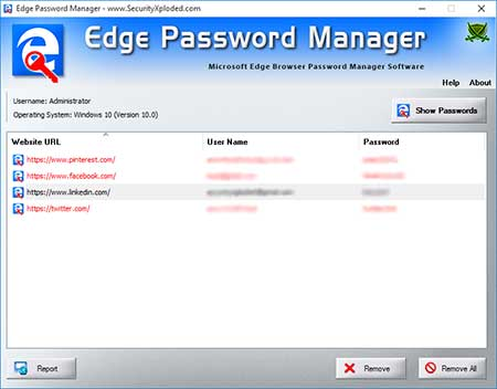 Edge Password Manager full screenshot