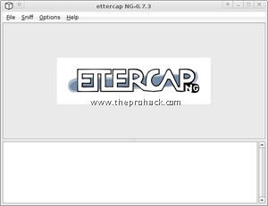 ettercap screen