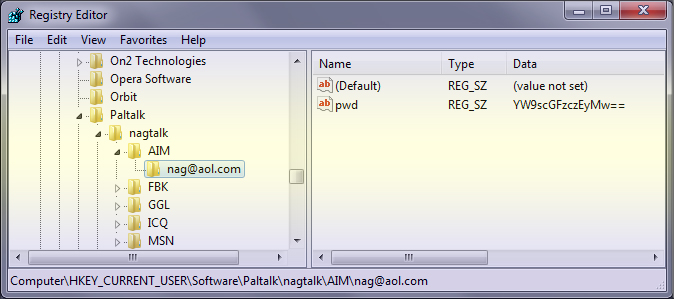 Paltalk Messenger Registry Storage