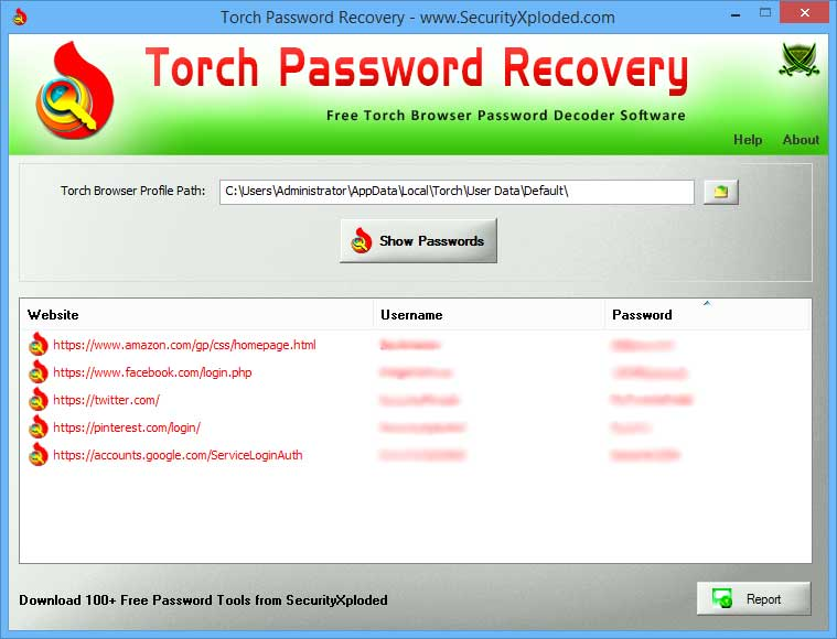 Password Recovery for Torch Browser Screen shot